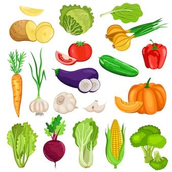 Legumes isolados no fundo branco