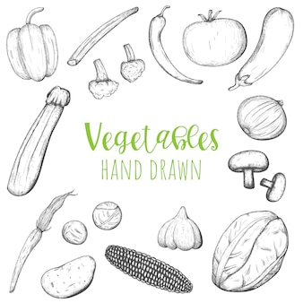 Legumes mão desenhada conjunto de vetores, vegetais esboçados isolados.