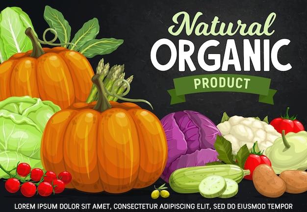 Legumes no projeto de quadro-negro de comida vegetariana de fazenda fresca. tomate, abobrinha, abóbora e couve-flor, couve verde, vermelha e napa, espargos e abóbora.