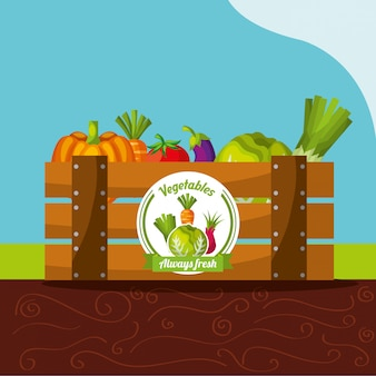 Legumes sempre frescos na cesta de madeira
