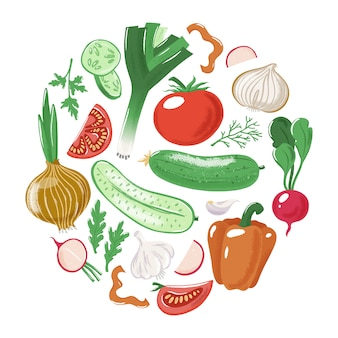Legumes - tomate pepino pimentão cebola alho alho-poró salsa rabanete