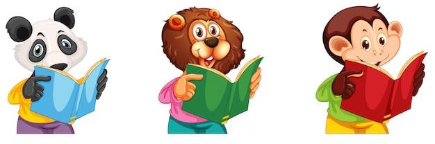 Leitura de panda, leão e macaco