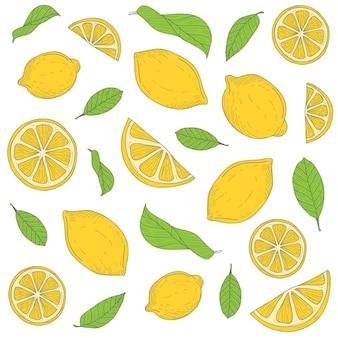 Lemon fruit patterns hand drawn