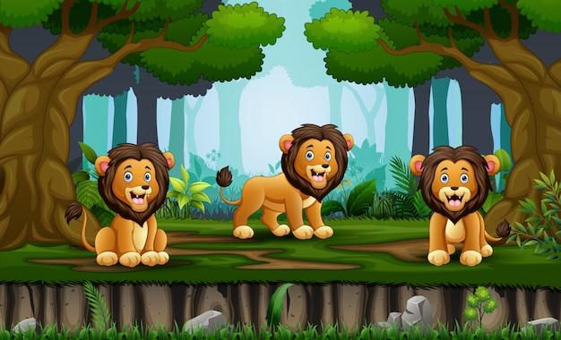 Leões de árvore dos desenhos animados, desfrutando na selva