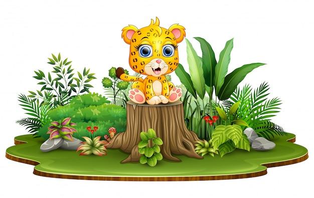 Leopardo de bebê feliz dos desenhos animados sentado no toco de árvore com plantas verdes
