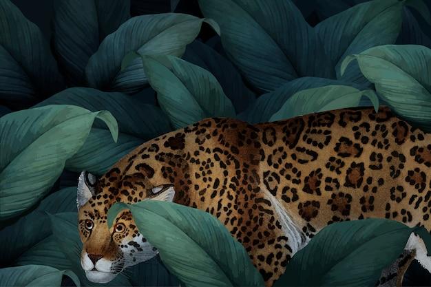 Leopardo em estado selvagem