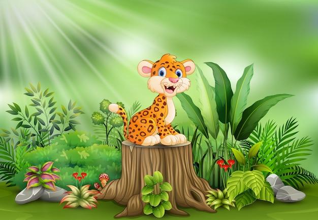 Leopardo feliz dos desenhos animados no coto de árvore com plantas verdes