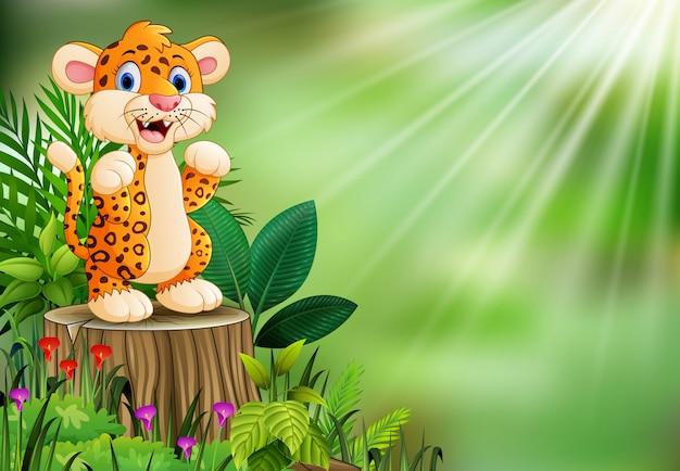 Leopardo feliz dos desenhos animados que está no coto de árvore com plantas verdes