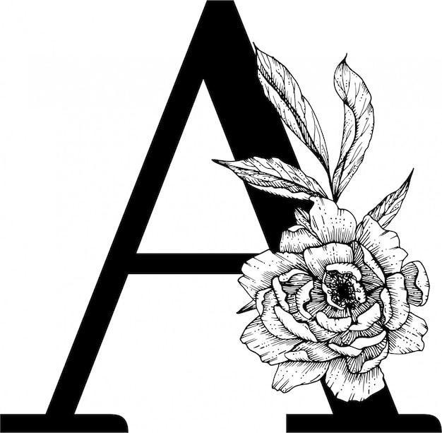 Letra a. alfabeto floral, alfabeto botânico