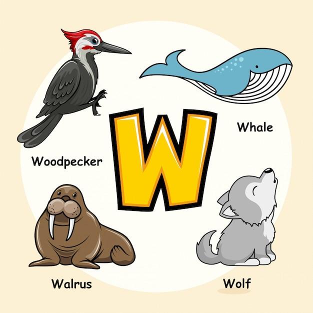 Letra de alfabeto animais fofos w