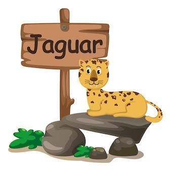 Letra de alfabeto animal j para jaguar