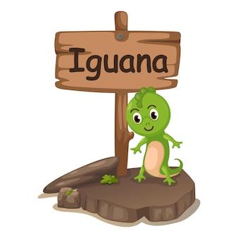 Letra do alfabeto animal eu para iguana
