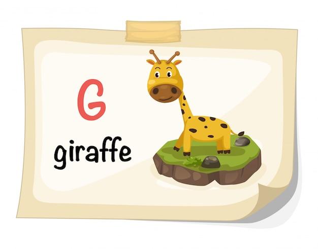 Letra do alfabeto animal g para vetor de ilustração de girafa