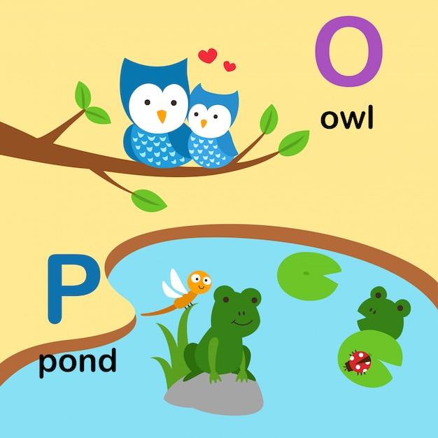 Letra do alfabeto o para coruja, p para lagoa, ilustração