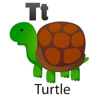 Letra do alfabeto t-tartaruga