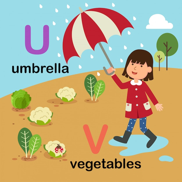 Letra do alfabeto u para guarda-chuva, v para legumes, ilustração