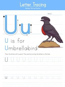 Letra u rastreamento animal alfabeto u para umbrellabird