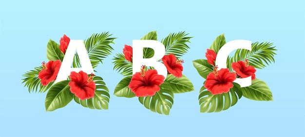 Letras abc rodeadas por folhas tropicais de verão e flores vermelhas de hibisco
