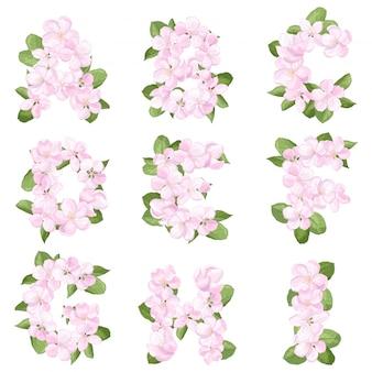 Letras ai do alfabeto inglês de flor de macieira