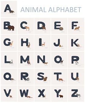 Letras azuis do alfabeto inglês com as trilhas animais nela e animais no estilo dos desenhos animados próximo.