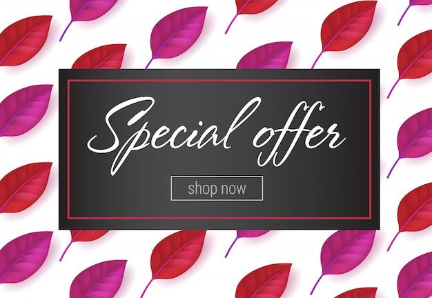 Letras de oferta especial no quadro com folhas padrão. oferta de outono ou publicidade de venda