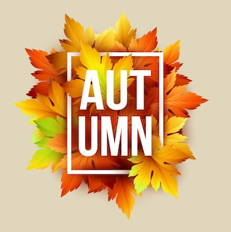 Letras de outono com folhas secas