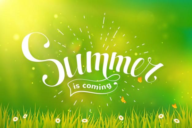 Letras de verão sobre fundo verde.