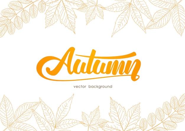 Letras manuscritas em laranja do outono com folhas desenhadas à mão no fundo branco. desenho da linha de esboço