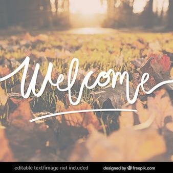 Lettering bem-vindo
