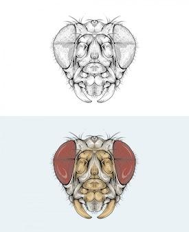 Libélula cabeça na mão de desenho
