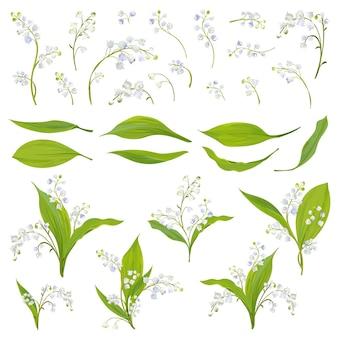 Lily valley mão desenhada aquarela flores, folhas e elementos florais para decoração, casamento, papel de parede, tecido. conjunto de primavera botânico. ilustração vetorial