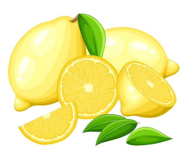 Limão com folhas inteiras e rodelas de limões. ilustração de limões. ilustração para cartaz decorativo, produto natural emblema, mercado dos fazendeiros.
