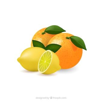 Limão e laranja do vetor da arte