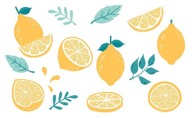 Limão fofo, coleção de objetos cítricos
