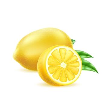 Limão realista com folhas suculentas frutas cítricas amarelas cheias de vitaminas