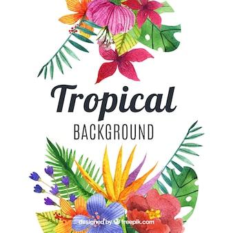 Linda aquarela fundo tropical
