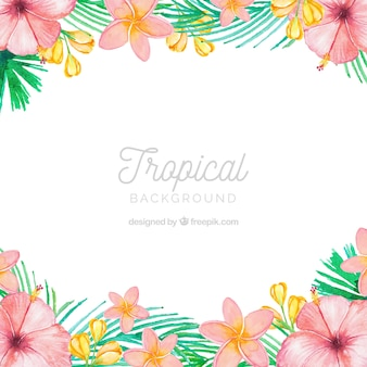 Linda aquarela fundo tropical