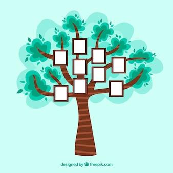 Linda árvore plana com molduras