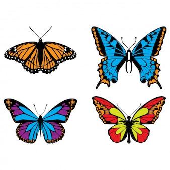 Linda borboleta realista