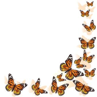 Linda borboleta voando em círculo.