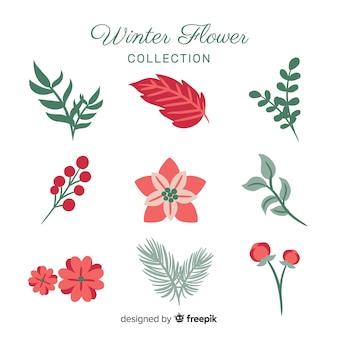 Linda coleção de flores de inverno