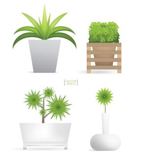 Linda decoração de plantas em vaso de flores
