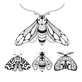 Lindas borboletas, ilustração vetorial, borboletas místicas com asas ornamentais decorativas.
