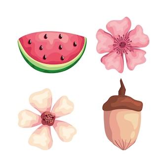 Lindas flores com ilustração de melancia e nozes