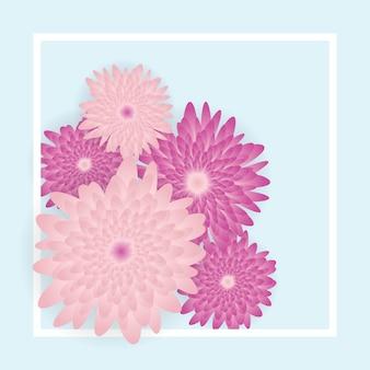 Lindas flores cor de rosa sobre fundo azul claro
