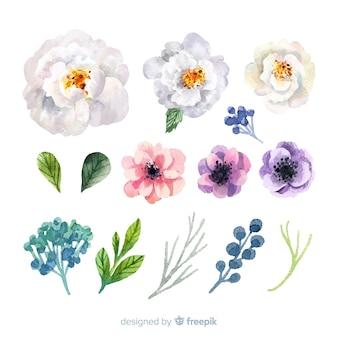 Lindas flores em aquarela e folhas