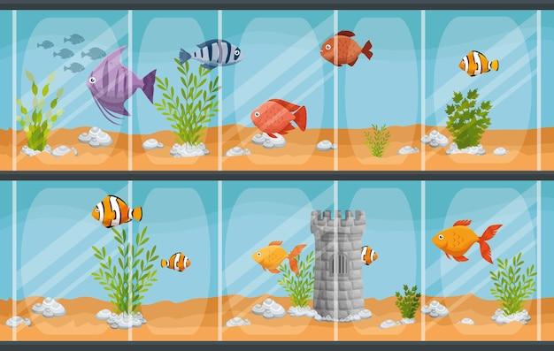 Lindo aquário com peixes
