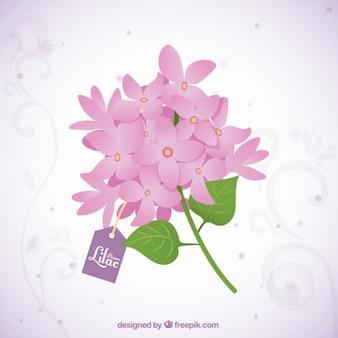 Lindo buquê de flores lilás com uma tag