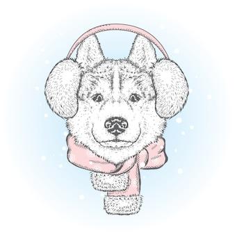 Lindo cachorro em fones de ouvido de inverno e um lenço. ilustração vetorial