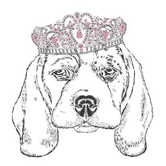 Lindo cachorro hipster na coroa